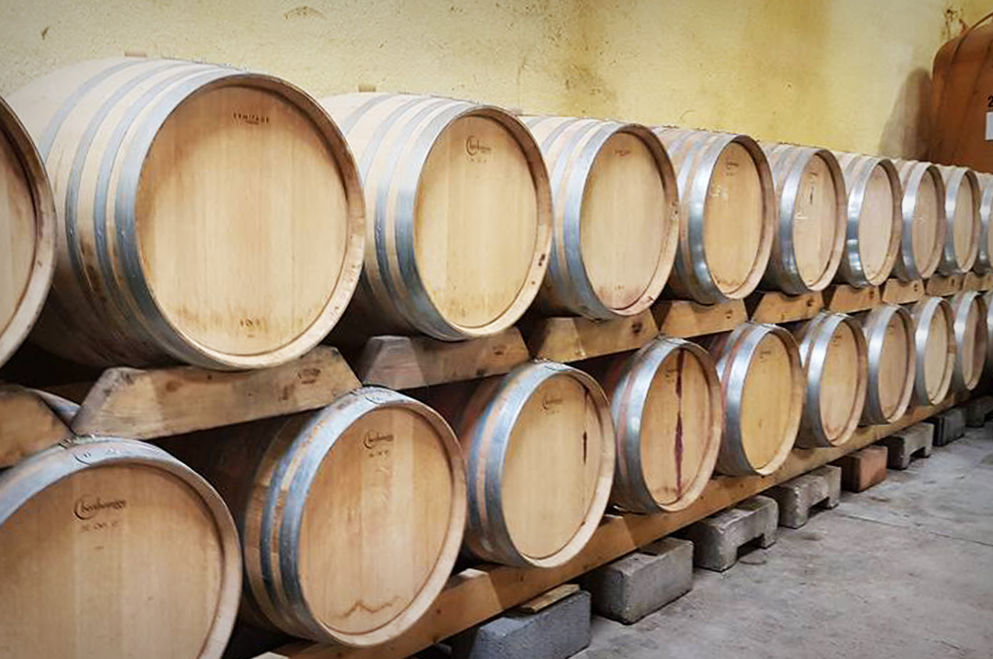 Domaine d escausses vinoteca