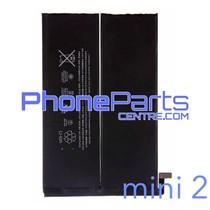 Batterij voor iPad mini 2 (2 stuks)