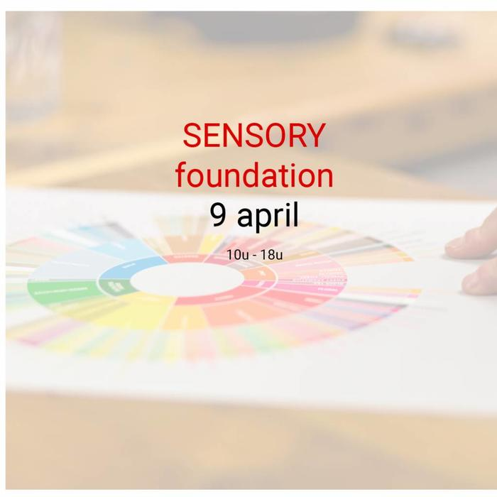 Sensory Skills Foundation
