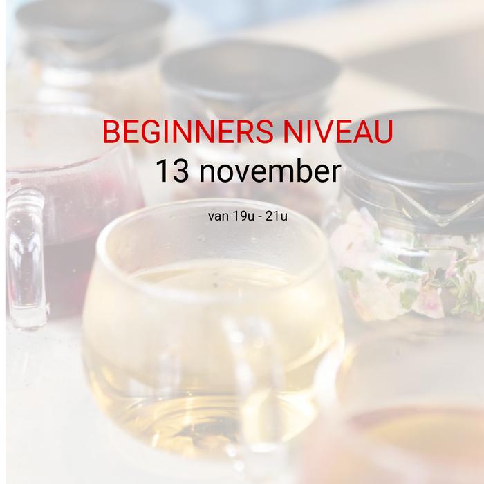 Beginners niveau: 13 november van 19u tot 21u
