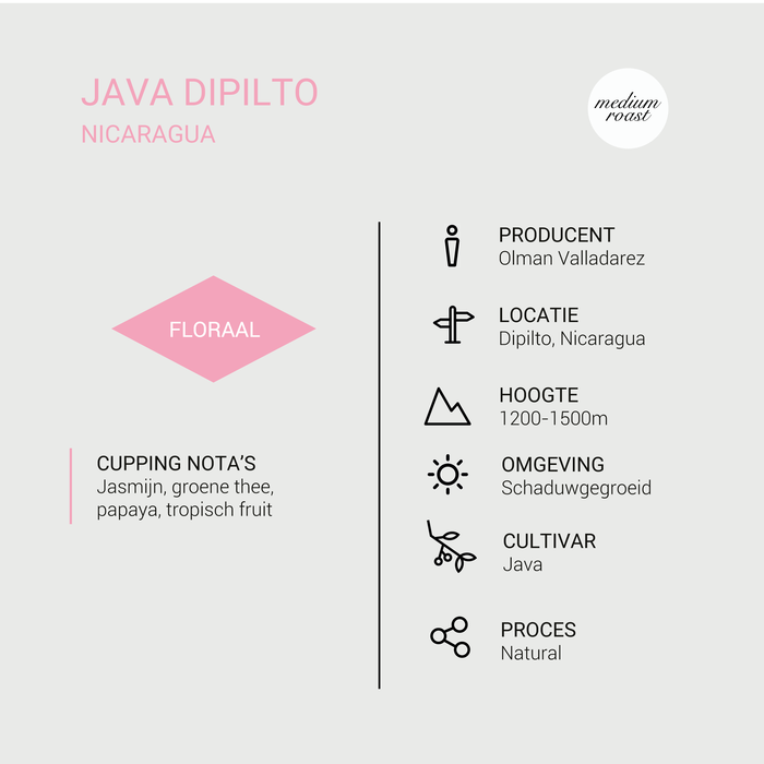 Java Dipilto - Nicaragua