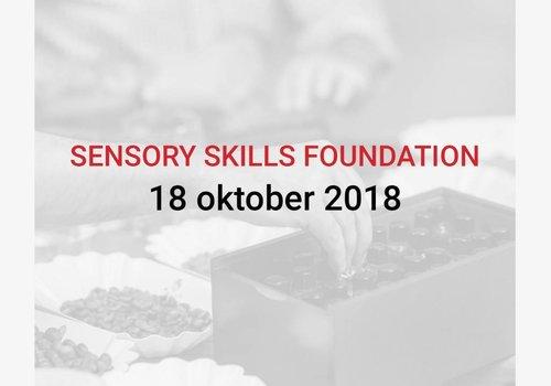 Cuperus Sensory Skills Foundation 18/10 (ENGLISH)