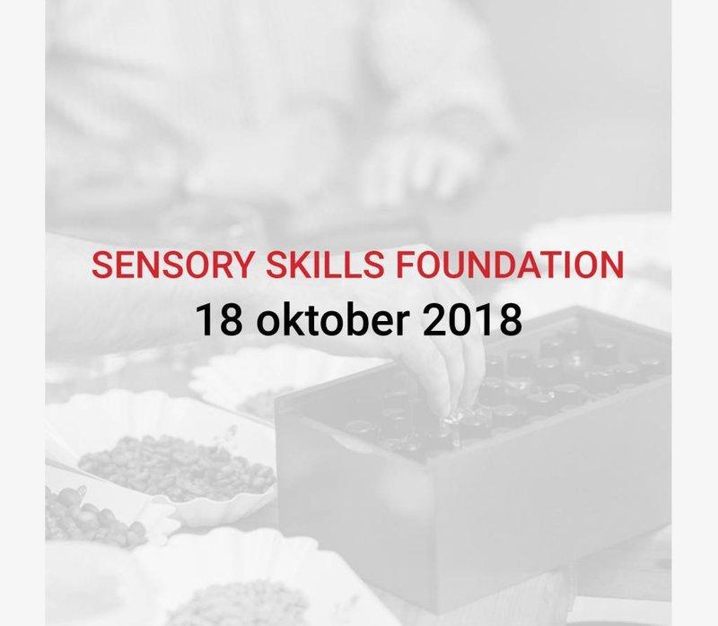 Sensory Skills Foundation (ENGLISH)