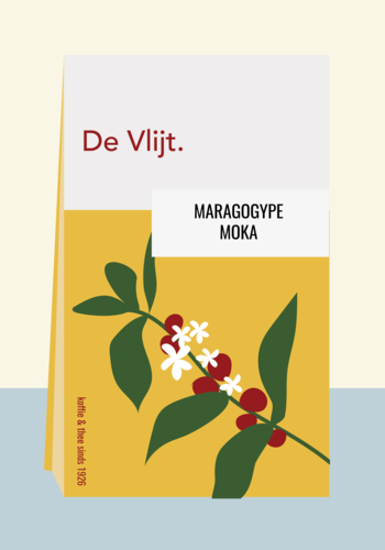 Maragogype - Moka