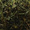 De Vlijt Earl Grey Groen