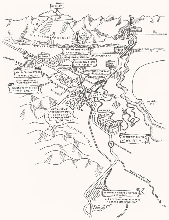 De wijngaarden van Mount Riley