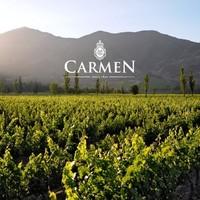 (Bijna) alles over veelzijdige Chileense wijnen