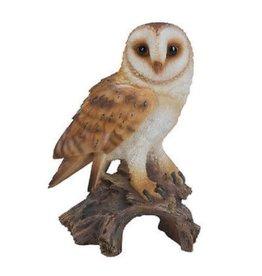 Vivid Arts VIVID ARTS REAL LIFE BARN OWL B