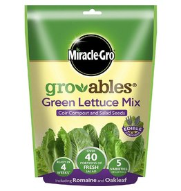 Miracle-Gro MIRACLE-GRO GRO-ABLES GREEN LETTUCE 250G