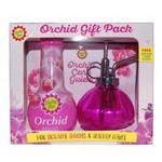 Bayer Garden Baby Bio Orchid Gift Pack