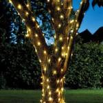 Smart Garden SMART GARDEN SOLAR POWERED 100 FIREFLY STRING LIGHTS LED's