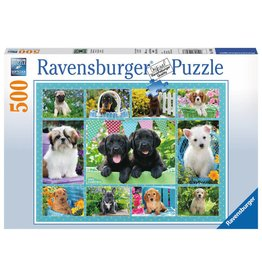 Cute Puppies 500 Piece Jigsaw