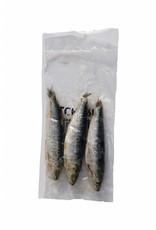 Sardines Frozen Bait