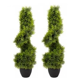 "Smart Garden 2 x 80cm (2' 6"")  TOPIARY TWIRL TREES"