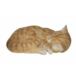 Vivid Arts VIVID ARTS RL SLEEPING CAT GINGER B