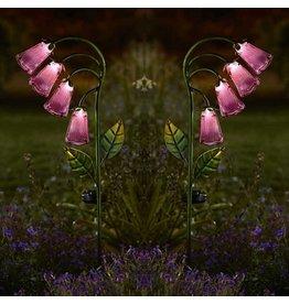 Smart Garden SMART GARDEN FOXGLOVE (TWIN PACK)