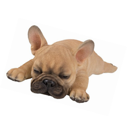 Vivid Arts VIVID ARTS PP SLEEPING FRENCH GOLDEN BULLDOG PUP