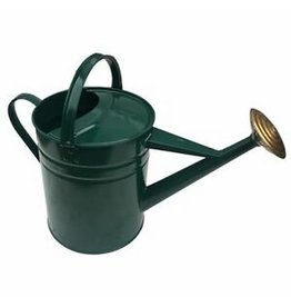 Green Galvanised Watering Can - 2 Gallon