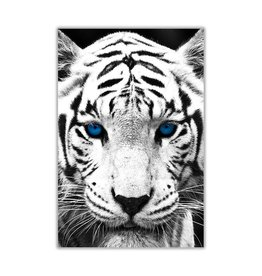 TIGER DECOR SQUARE PICTURE FRAME WALL ART