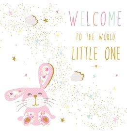 Portfolio Cards SM/New Baby Rabbit Card