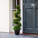 Smart Garden Smart Garden Topiary Twirl 90cm