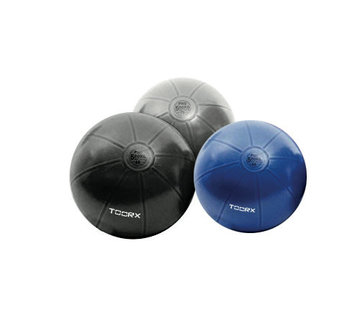 Toorx Fitness Gymbal PRO - 500 kg