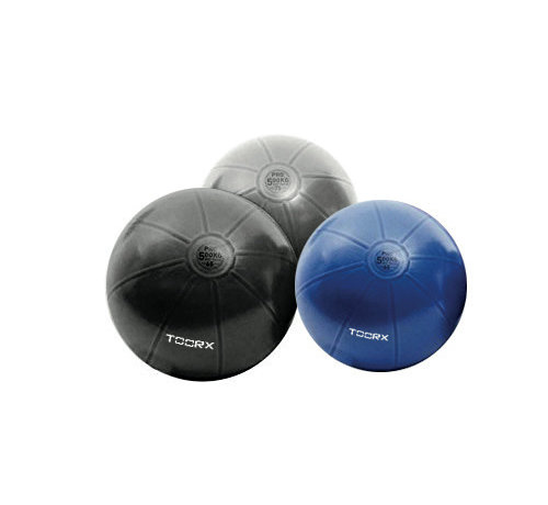 Toorx Fitness Toorx Gymbal PRO - 500 kg - Fitness Ball - Stability Ball