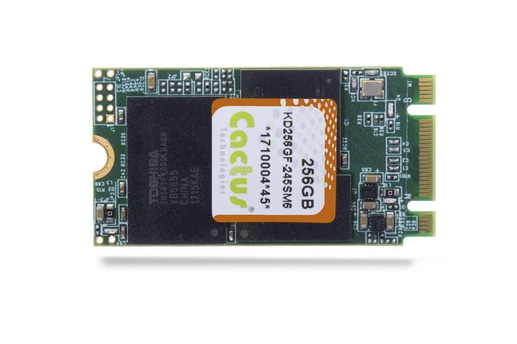 pSLC-NAND-Flash-Speicher: M.2-Karten in zwei Formfaktoren