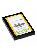 Cactus Technologies Limited KD256GF-240S, 2.5 Inch SERIAL ATA SSD, Cactus-Tech