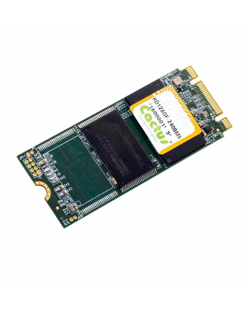 Cactus Technologies Limited KD256GFI-240SM5, M.2 2260 Flash-Speicher, Cactus-Tech