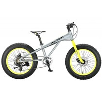 Altec FAT Bike 20 inch 2D 7v