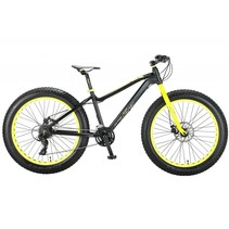 Altec FAT Bike 26 inch 2D 21v