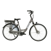 Vogue Infinity Dames 53cm Matt Grey 8V