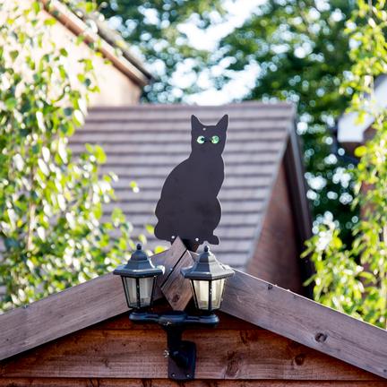 Katten Verjagen
