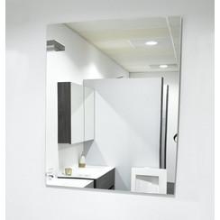 Spiegel Banox 80x100cm
