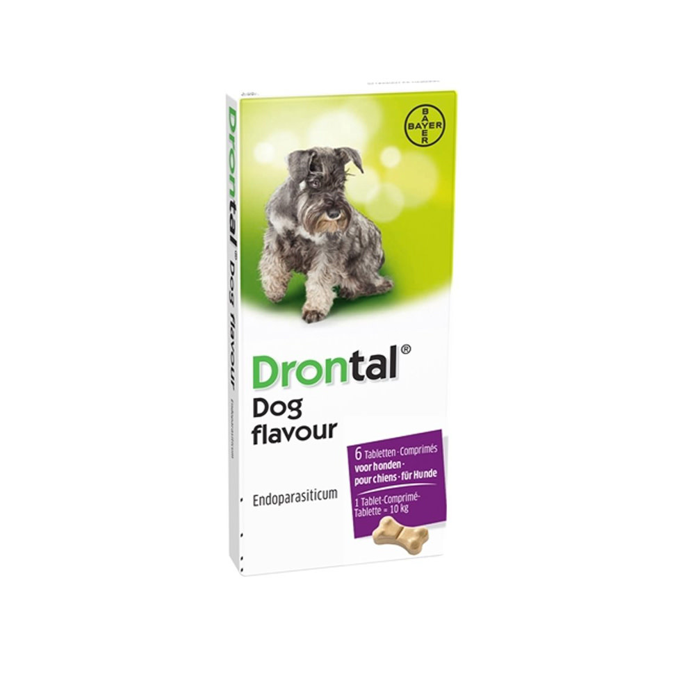 Bayer Drontal Dog Flavour 6 Tabletten-1