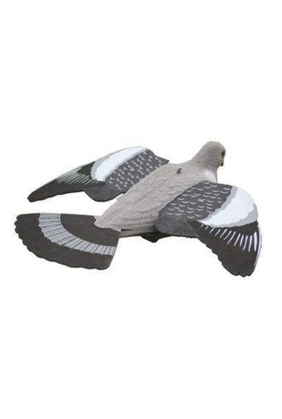 Proloo Lokvogel Vliegende Duif