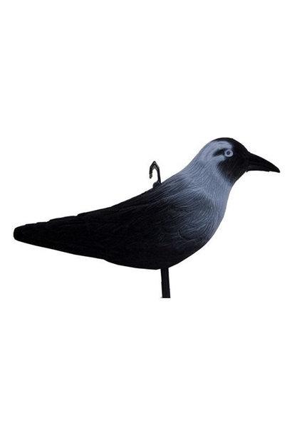 ProLoo Lokvogel Kauw