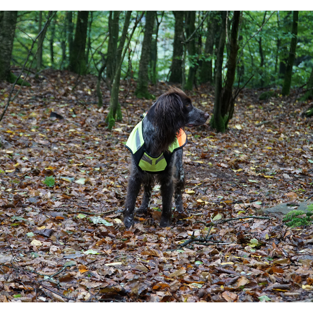 Boar Protec Hondenvest 5XL-3