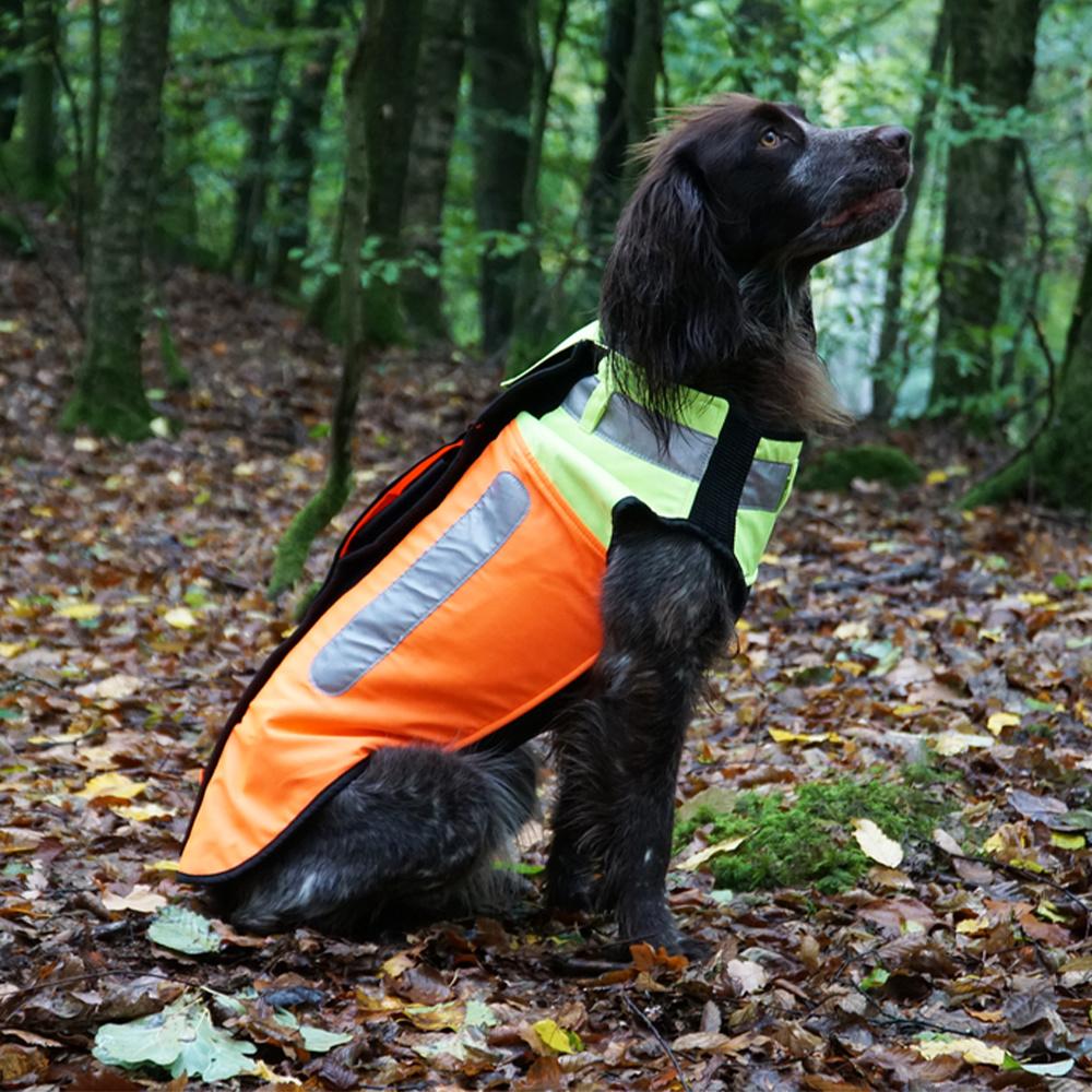 Boar Protec Hondenvest 5XL-1