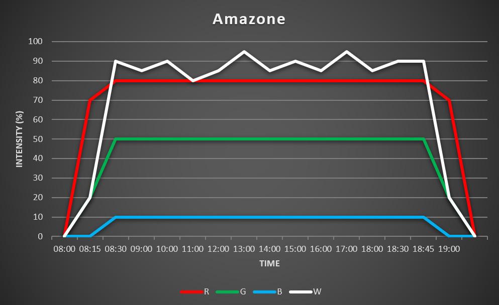 Grafiek Amazone schema