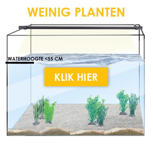 Weinig planten waterhoogte minder dan 55cm