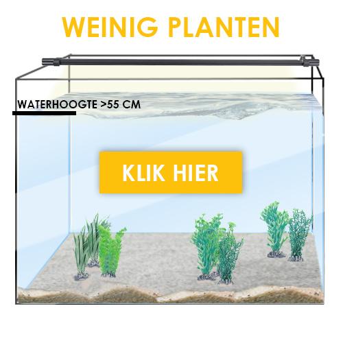 weinig planten 55cm of meer waterhoogte