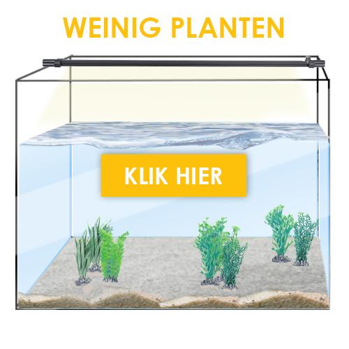 Weinig planten zoetwater