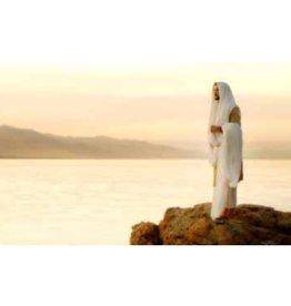 I am the Light (Spanish) - Scott Sumner, Recommend Holder