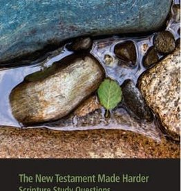 The New Testament Made Harder Scripture Study Questions
