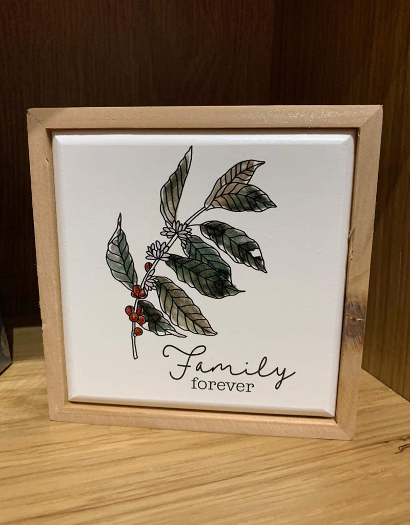 Family Forever Accent White 5in