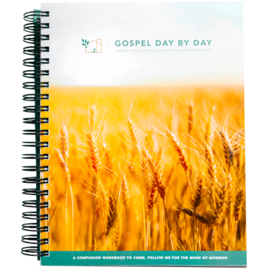 Deseret Book Company (DB) Gospel Day By Day Workbook for the Family A Companion Workbook to Come, Follow Me for the Book of Mormon by Deseret Book Company