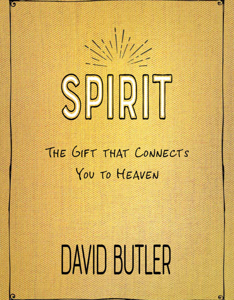 Spirit by David Butler in store end of July 2020