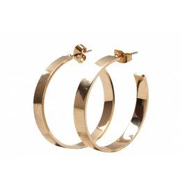 Pieces PC Sandra Hoop Earrings Style 1 Goudkleurig